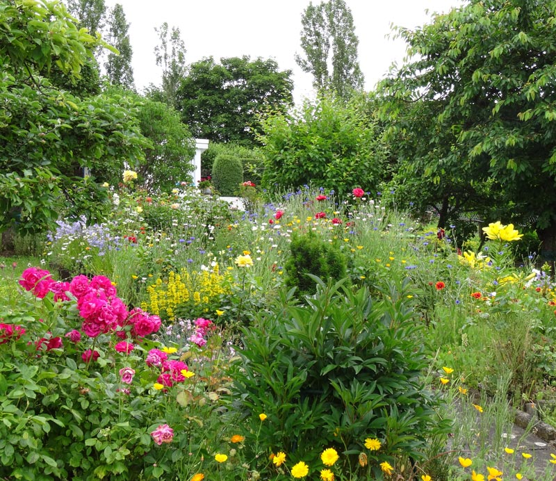 Blühender Garten am Steinertsberg Gera