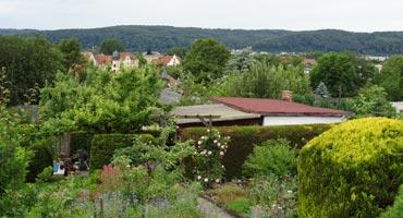 Steinertsberg Bild 3