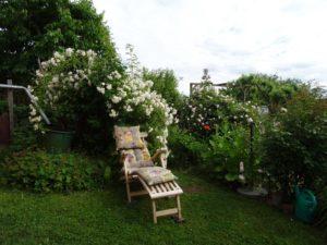 Garten Impressionen Teil 1